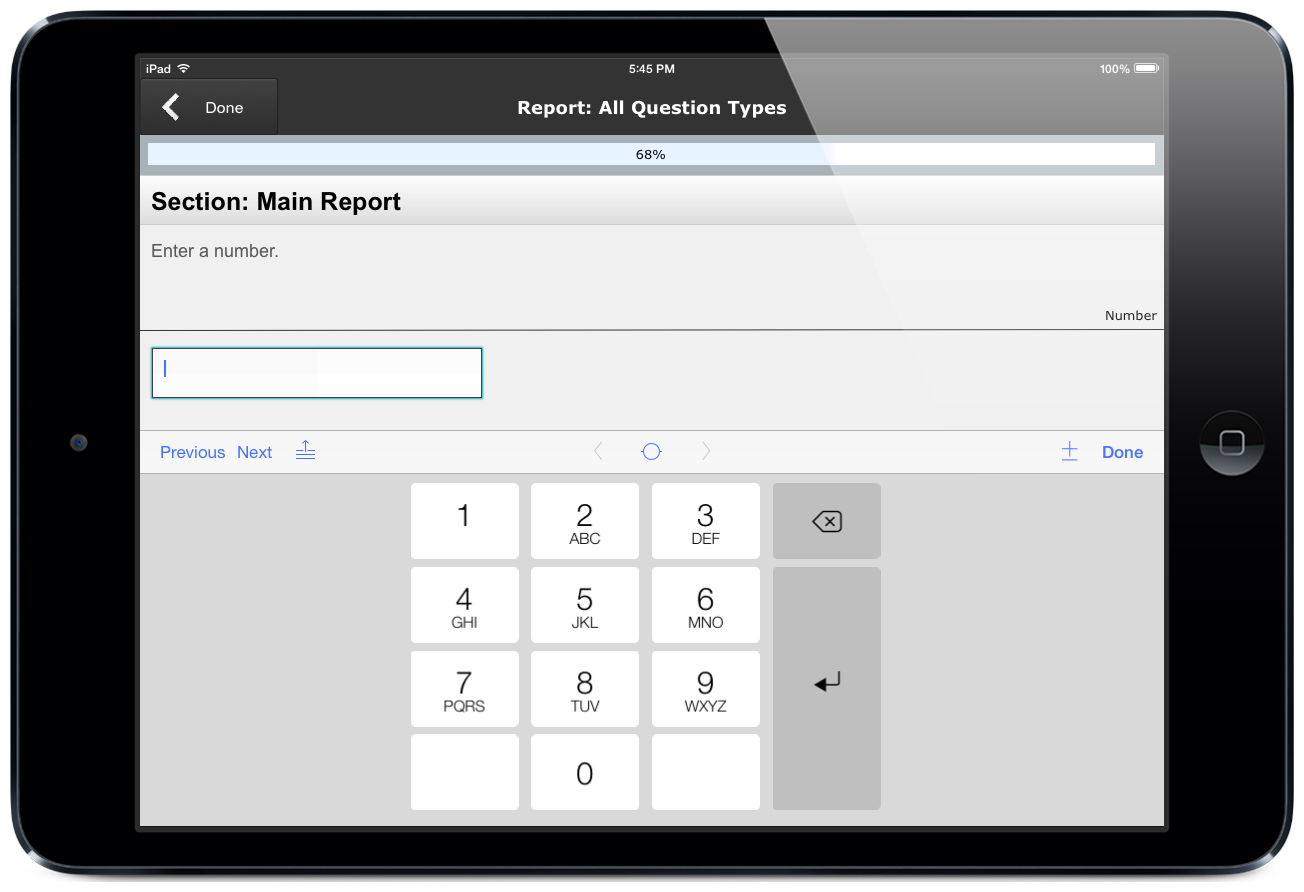 Screenshot of number entry pad in ccAudits mobile form building app